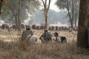 zimbabwe hwange walking safari on foot