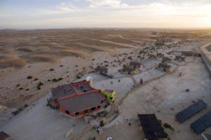 Desert Breeze Landscape
