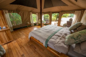 manyara green camp bedroom view