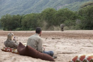 manyara green camp tanzania elephant river
