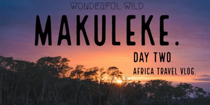 Safari Sundays Makuleke Day 2