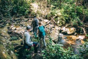 greystoke mahale trekking