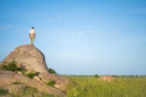 lamai serengeti landscape guide