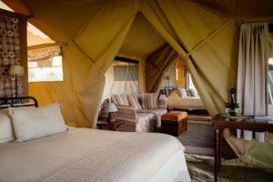 serengeti safari camp family room