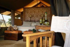 serengeti safari camp guest tent
