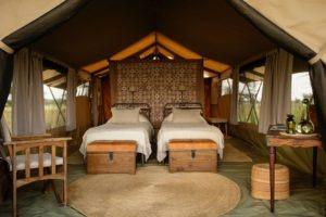 serengeti safari camp twin room