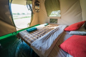 wayo walking camp serengeti bed view