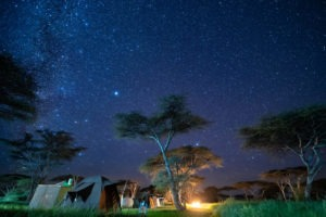 wayo walking camp serengeti camp stars