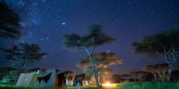 wayo walking camp serengeti camp under stars