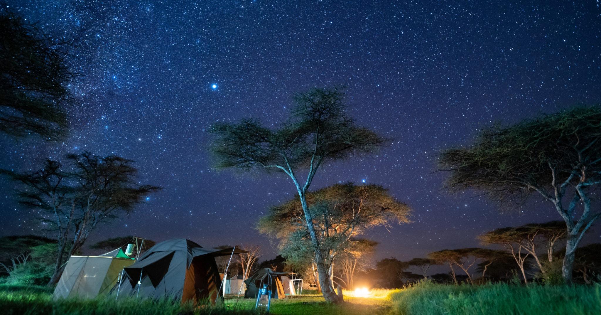 wayo walking camp serengeti camp under stars