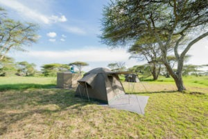 wayo walking camp serengeti tent exterior