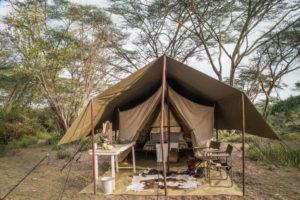 Horse Safari Tent
