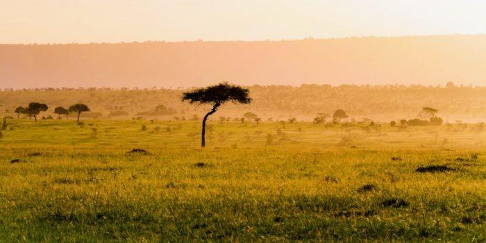 Masai Mara Kenya16