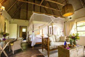 bwindi lodge uganda room interior