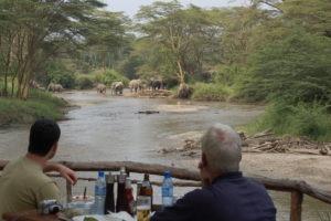 ishasha wilderness camp uganda dining elephants