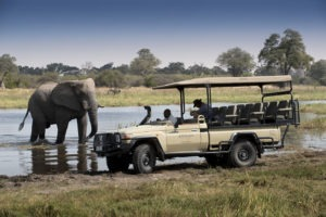 khwai tented camp botswana elephant vehicle