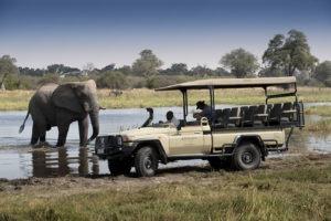 khwai tented camp botswana elephant vehicle