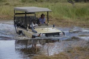 khwai tented camp botswana game drive