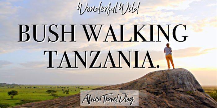 Bush walking tanzania