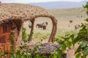 Elephant in front of waterhole adjusted