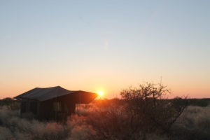 Kalahari Horse Safari camp 2