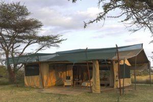 Kicheche Bush Camp Tent Exterirors 02