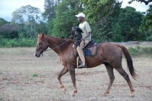 Pferdesafari Mitreiter Makoa Farm