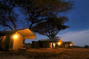 Pferdesafari mobile Camp