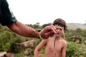 Snake lesson 1 1
