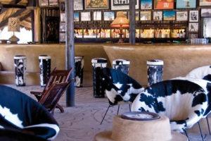 planet baobab botswana bar
