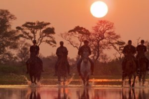 Okavango Delta Ride Sunset