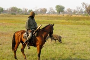Okavango Delta Rider