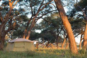 Ride Zimbabwe Tent
