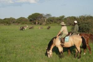 Ride Zimbabwe plains 2