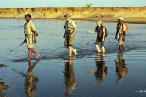 Surefoot Safaris Walking Luangwa River Will Whitford