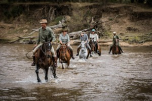 Horse Safari River Crossing