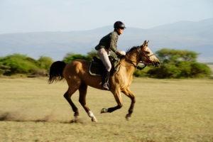 Kaskazi Horse Safari 1