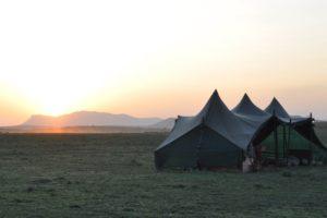 Kaskazi Horse Safari Tent