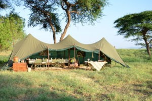 Natron Flamingo Ride dining tent