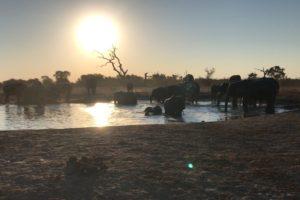 Sambia Safari 20