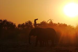 Sambia Safari 23