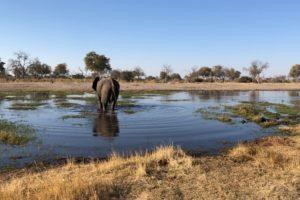 Sambia Safari 31