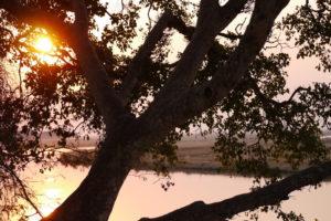 Sambia Safari 6