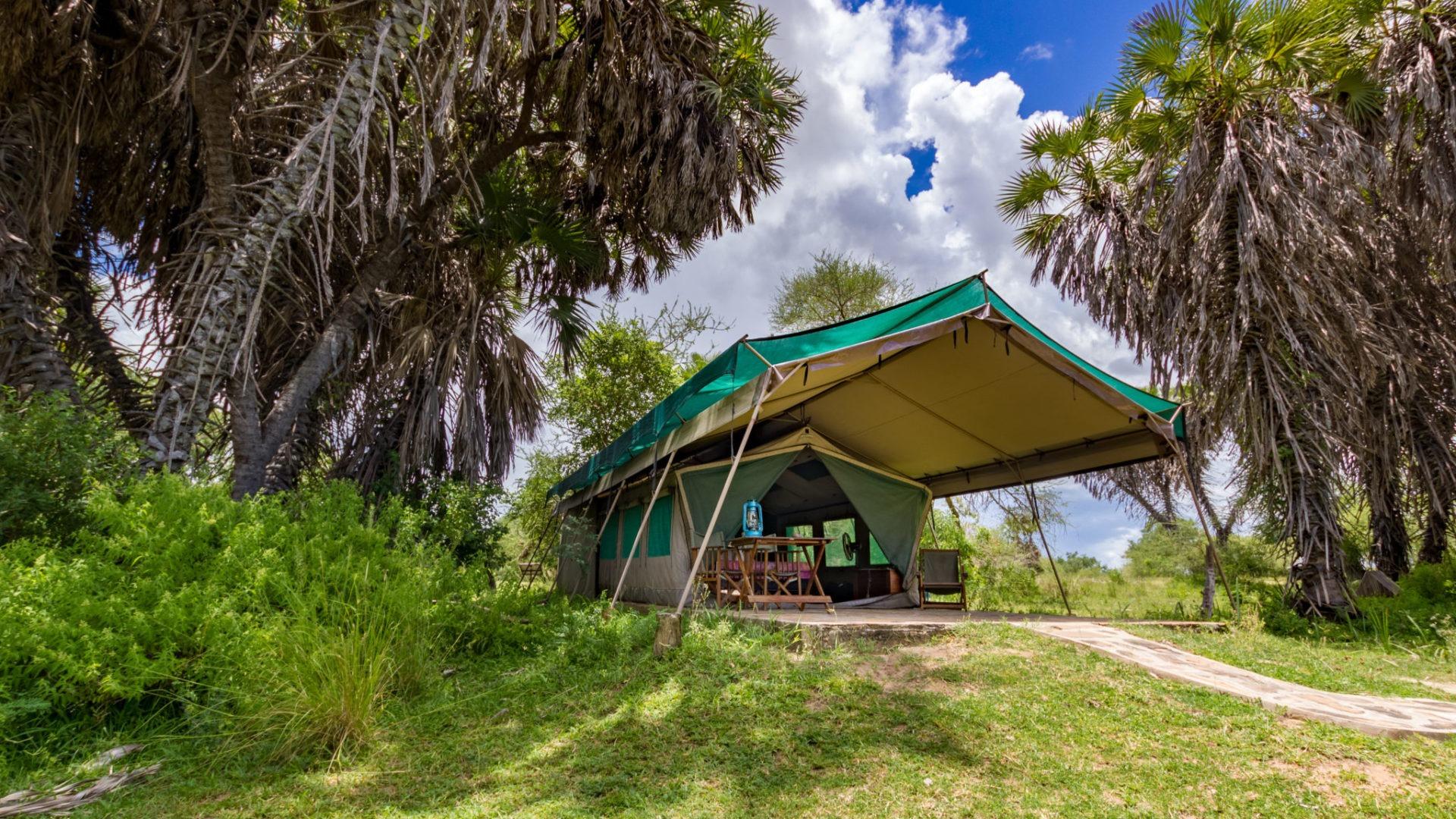 1 Tent 6