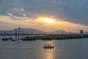 5 Boat Safari 7