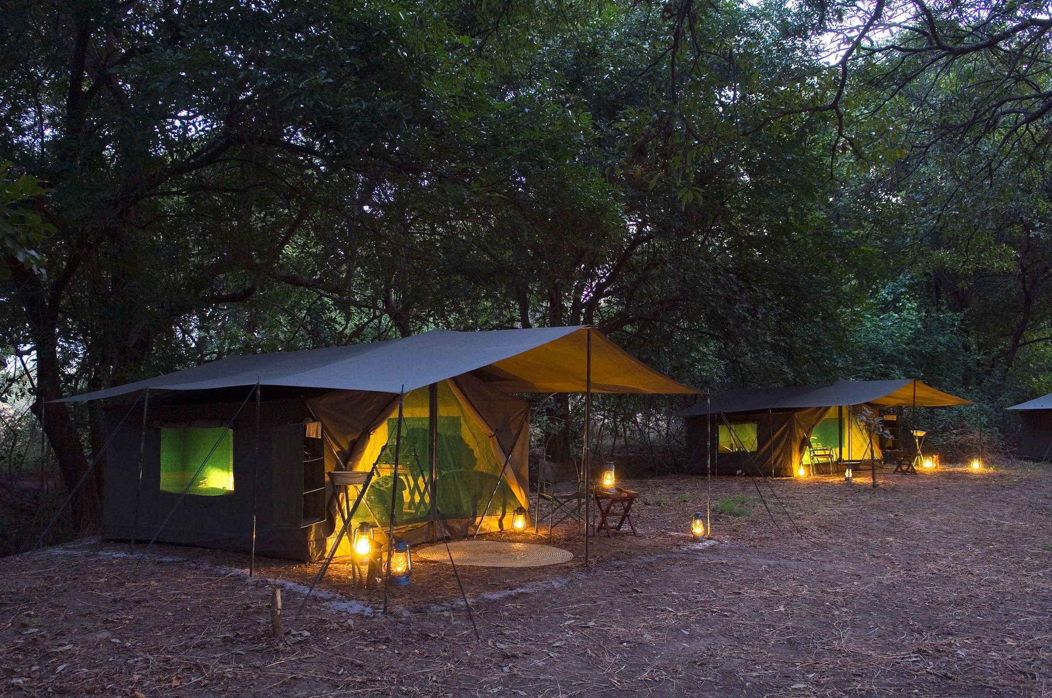 zambia south luangwa national park mobile walking safaris 11